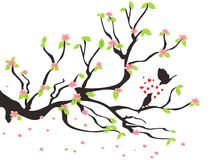 Loving birds on the spring plum tree Stock Photo