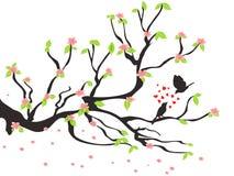 Loving birds on the spring plum tree Stock Photo