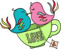Loving birds on tea cup Royalty Free Stock Photo