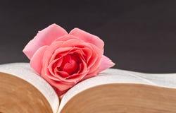 Loving Bookmark Royalty Free Stock Photos