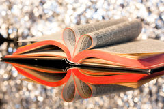 Loving books. Open book with pages in the form of a heart with bokeh background Stock Photography