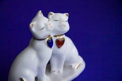 Loving cats Stock Photography