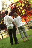 Loving Couple. Couple holding hands in the park Royalty Free Stock Images