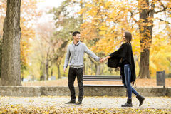 Loving couple in autumn park Royalty Free Stock Photography