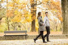 Loving couple in autumn park Stock Photography