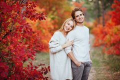 Loving couple in the autumn park stock image
