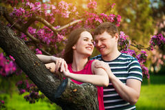 Loving couple in the blossoming apple orchard Stock Image