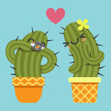 Loving couple of cactus taking a pictures Royalty Free Stock Images