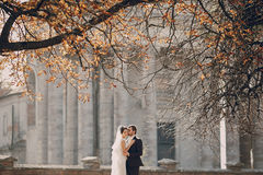Loving couple in the castle Stock Images