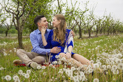 Loving couple on dandelion field Stock Images