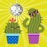 Loving couple of disco cactus Royalty Free Stock Photography
