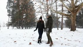 A loving couple in fairy-tale winter weather plays snowballs stock video
