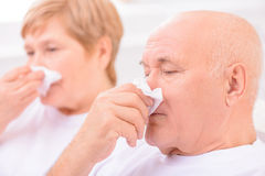 Loving couple feeling ill. Improve your health. Close up of unhealthy loving couple having running nose and feeling ill while blowing their noses Royalty Free Stock Photo