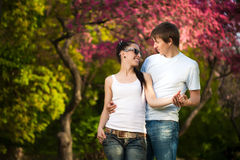 Loving couple in a green park. summer Royalty Free Stock Photo