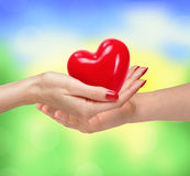 Loving couple holding heart in hands on sunny nature background Stock Image