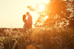 Loving couple kissing at sunset Royalty Free Stock Photos