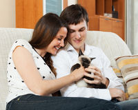 Loving couple with kitten Royalty Free Stock Images