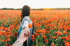 Pov of man follows a woman in poppy field. Loving couple. Man follows a brunette young woman in red poppy flower field at sunset in summer outdoor, point of stock image