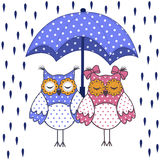 Loving couple of owls with umbrella in the rain Stock Image