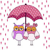 Loving couple of owls with umbrella in the rain Stock Photos