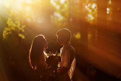 Loving couple in the park looking at each other in the sunset Royalty Free Stock Photography