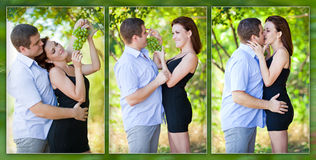 Loving couple playfully eating grapes Stock Photos