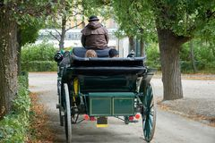 A loving couple is riding a carriage in the park. View from the back.  Stock Photo