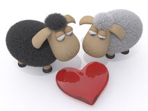 Loving couple of sheep Stock Photos