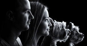 Loving couple and two yorkshire terrier dogs -Black and white royalty free stock images