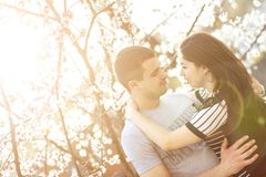 Loving couple under blossoming trees Stock Photography
