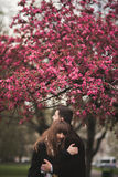 Loving couple under a tree with flower in the park royalty free stock photos