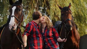 Loving couple on a walk with horses stock video footage