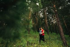 Loving couple walking in the coniferous forest stock photography
