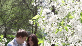 Loving couple walking in a park near a blossoming tree. In the spring stock video