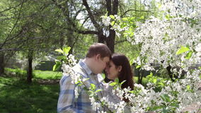 Loving couple walking in a park near a blossoming tree stock video footage