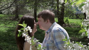 Loving couple walking in a park near a blossoming tree. In the spring stock footage