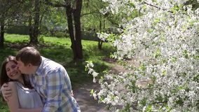Loving couple walking in a park near a blossoming tree. In the spring stock video footage