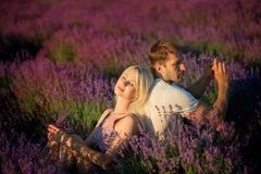 Happy couple in a field of lavender royalty free stock image