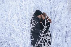 A loving couple on a winter walk. Snow love story, winter magic. Man and woman on the frosty street. The guy and the girl are rest. A loving couple on a winter Royalty Free Stock Images