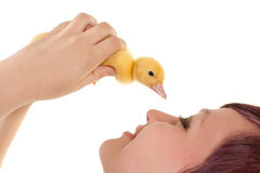 Loving an easter duckling Stock Images