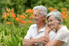 Loving elder couple Royalty Free Stock Image