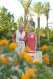 Loving elder couple Royalty Free Stock Image