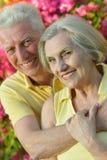 Loving elder couple Royalty Free Stock Photography