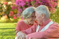 Loving elder couple Stock Photos