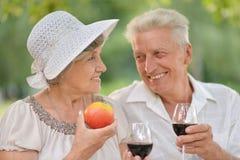Loving elder couple Stock Images