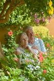 Loving elder couple Royalty Free Stock Images