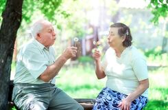 Free Loving Elderly Couple Blowing On Dandelions Stock Photo - 189754880