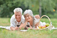Loving elderly couple Stock Photos