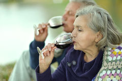 Loving elderly couple Royalty Free Stock Image