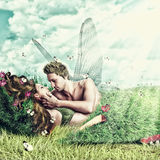 Loving fairy couple in a bed of grass Stock Photography